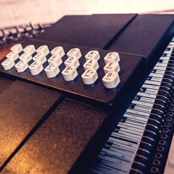 closeup of buttons on Oscar Schmidt Autoharp