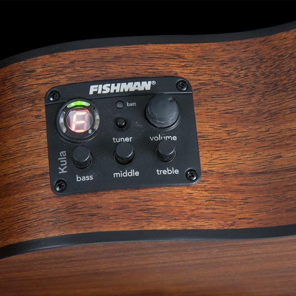 closeup of Fishman controls on Oscar Schmidt ukulele