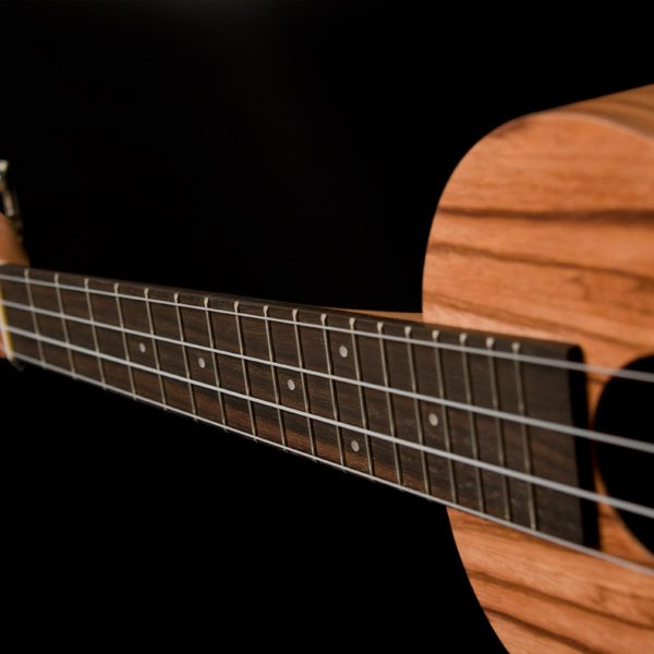 neck of Oscar Schmidt ukulele